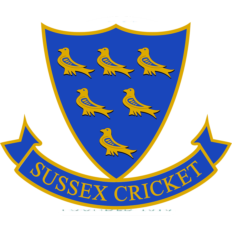 Sussex Cricket Disability